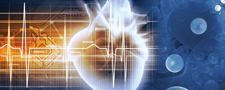 EACTS Course in Cardiovascular Innovation: Leipzig-Dallas 2017